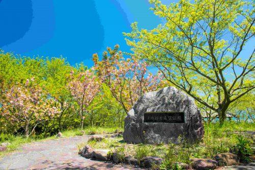 小城観音展望公園